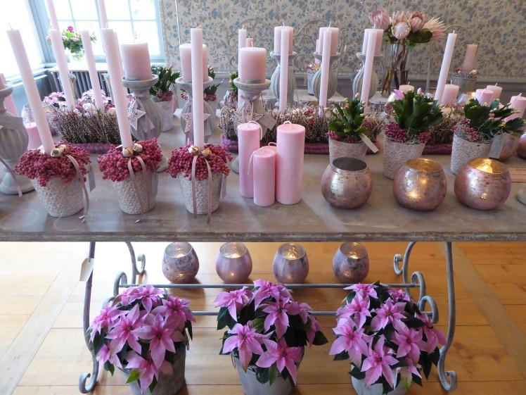 Advent rosa Adventsausstellung Blumen