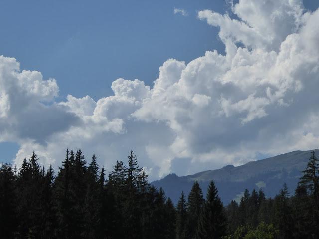 Wolken über Wald
