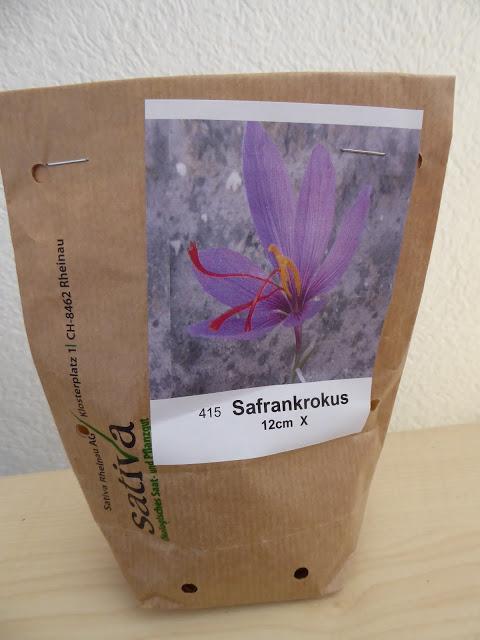Safrankrokus
