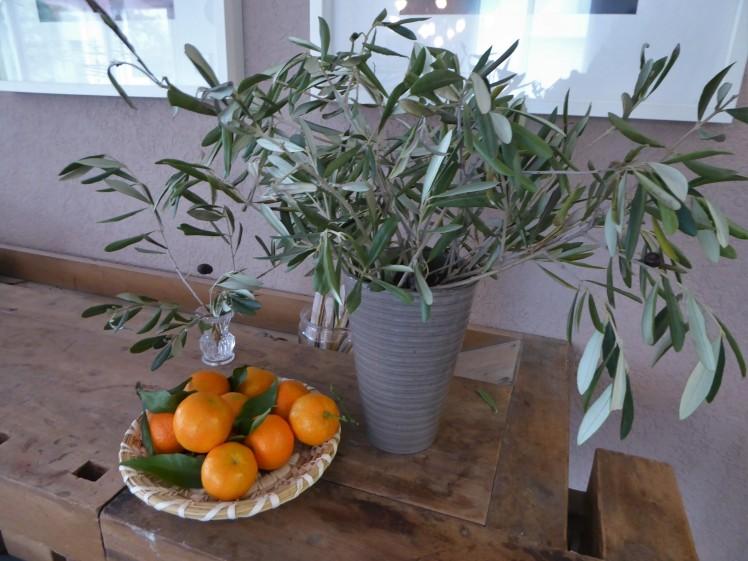 Olivenbaumzweige