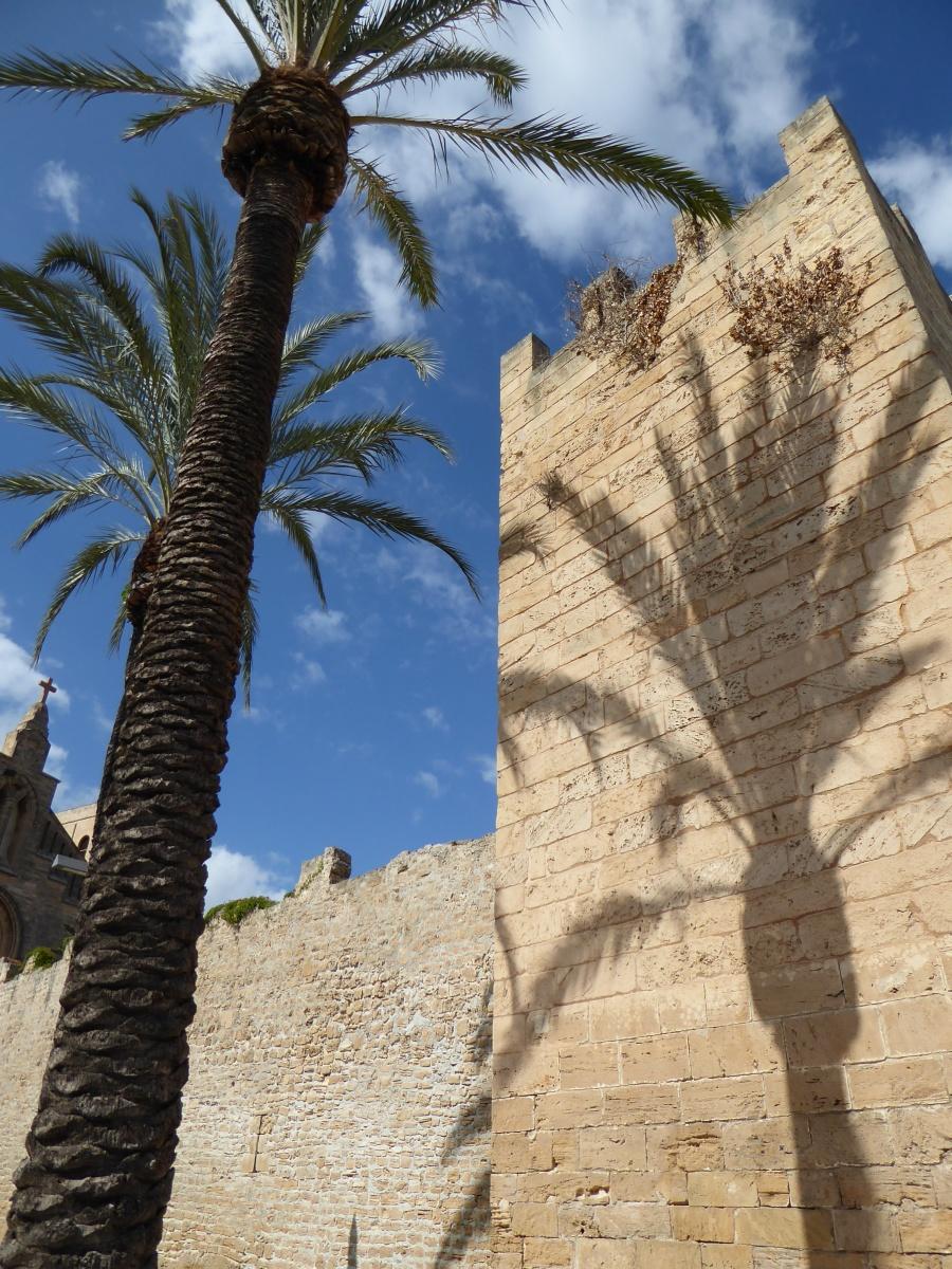 Das Mallorca-Rätsel. [Die drei ???]